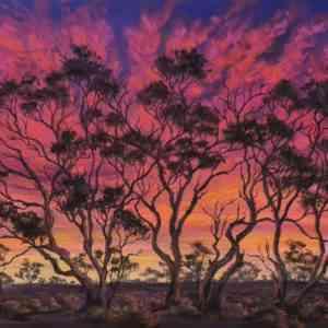 Gidgee Sunset - SOLD
